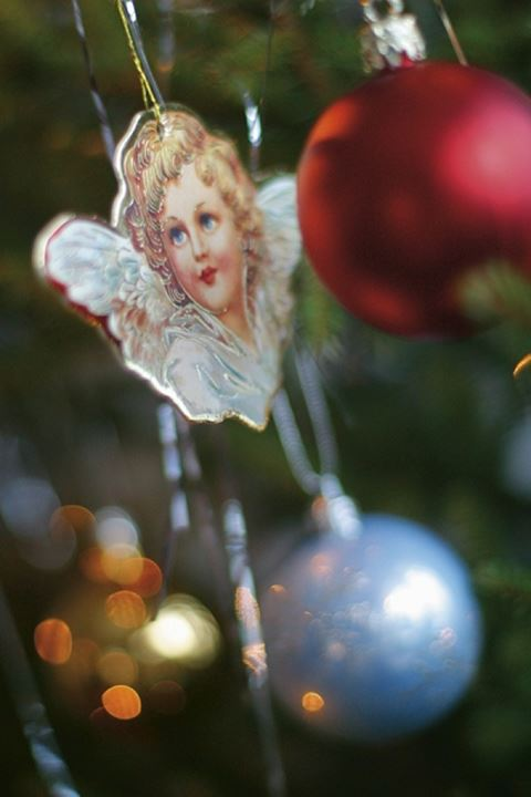 Close-up view of Christmas decorations