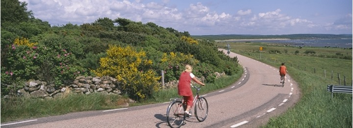 People on bicycle in Halland, Sweden