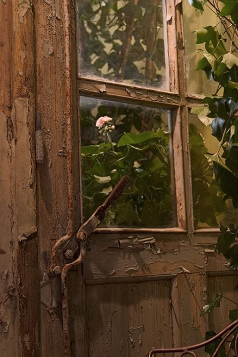 A weathered door, Sweden