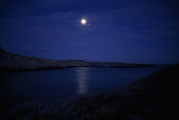 A seaside in moonlight, Sweden