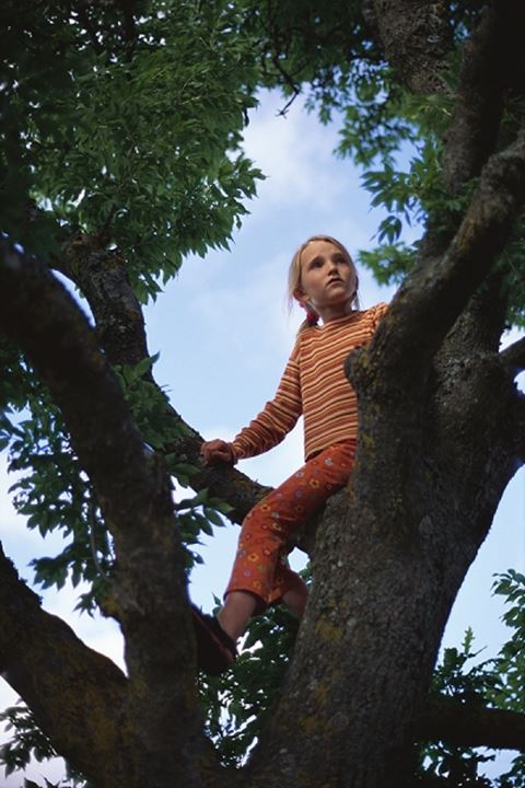 A girl climbing in trees, Sweden