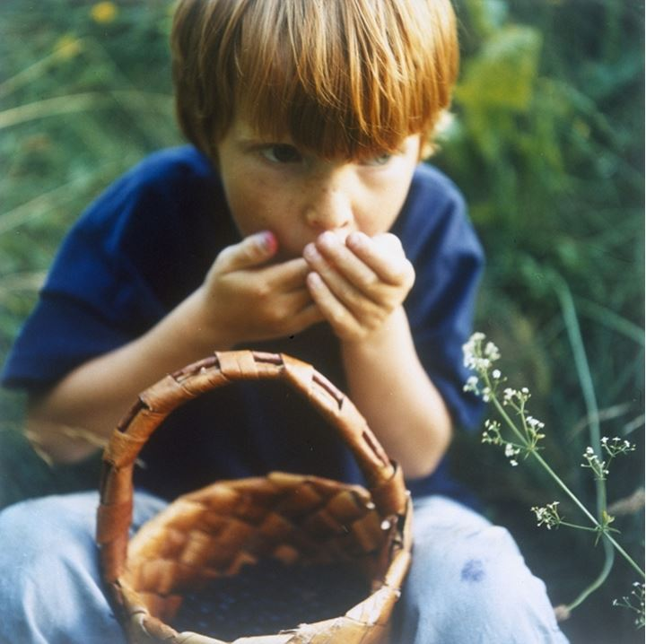 A red haired boy eating bilberries out of a basket in the woods, Sweden