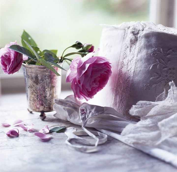 Close-up of Roses in a vase