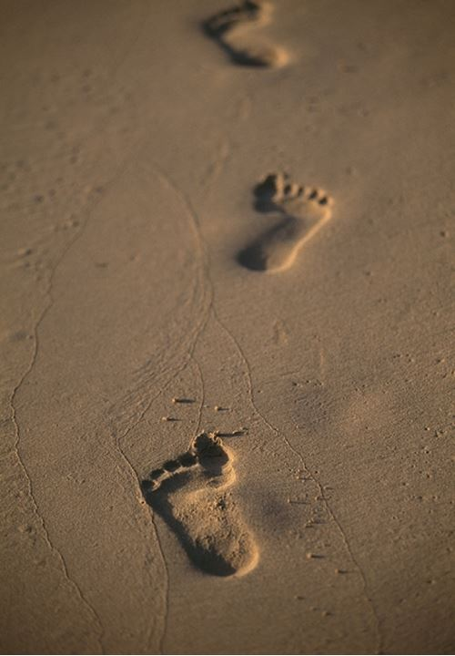 High angle view of footprints on the beach