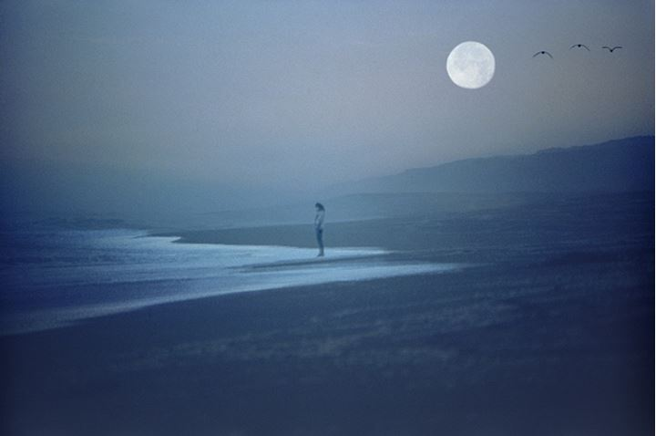 Woman on wave swept sandy shore under full moon and passing seagulls