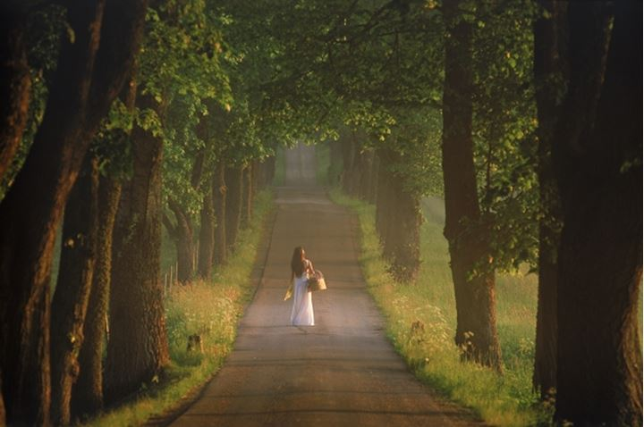 Woman in white dress in soft sunrise light on country road in Sweden