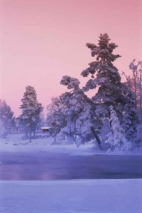 Frosty day along Dal River in Dalarna during Swedish winter