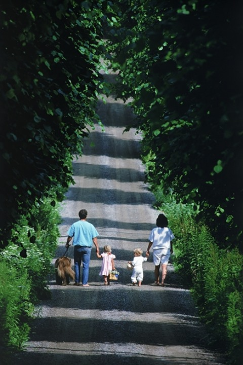 Family of four with dog on tree lined road in Sweden in summer