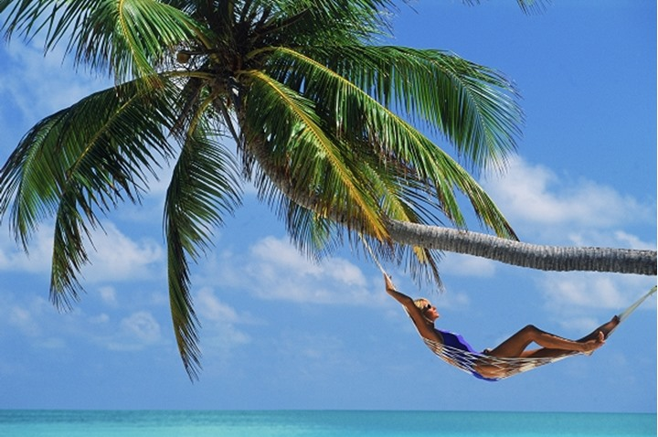 Woman relaxing in hammock under palm tree