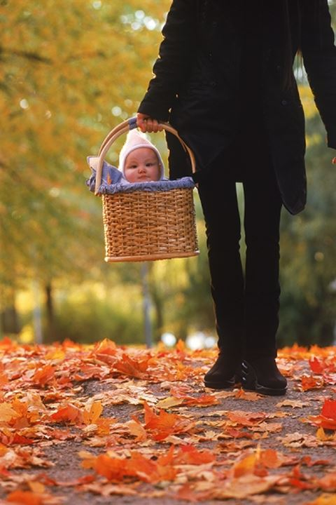 Mother taking her baby in basket for walk in autumn
