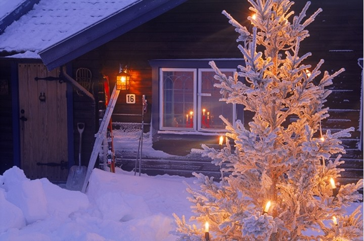 Mountain cabin under snow in Dalarna Sweden with Christmas lights on tree