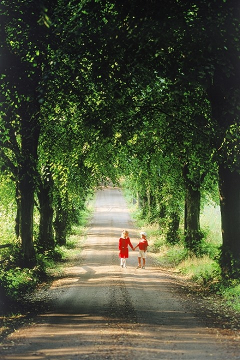 Boy and girl strolling down tree lined country road