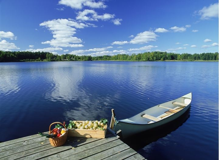 Apples and vegetables on lake pier with canoe on summer day in Sweden