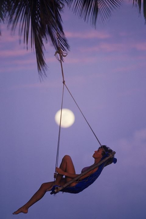 Woman in swing hanging from palm tree with full moon