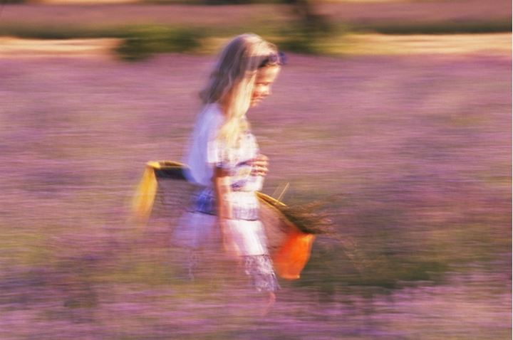 French girl with basket running through field of lavender in Provence
