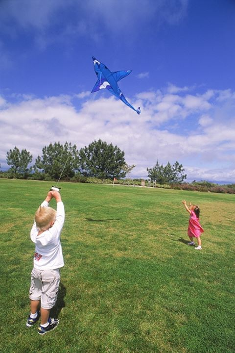 Boy and girl flying kite together