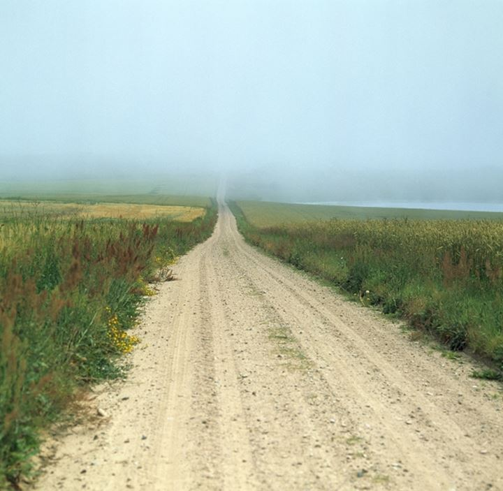 Long country road