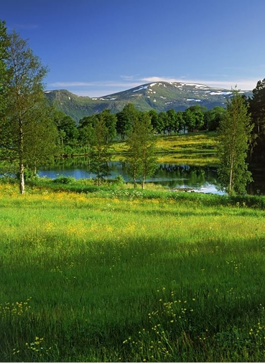 Farmlands and mountains of More og Romsdal at Borgund in Norway