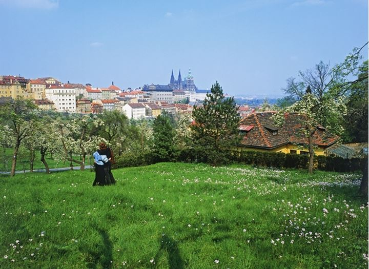 Couple amid wild flowers in Petrin Park with Prague Castle