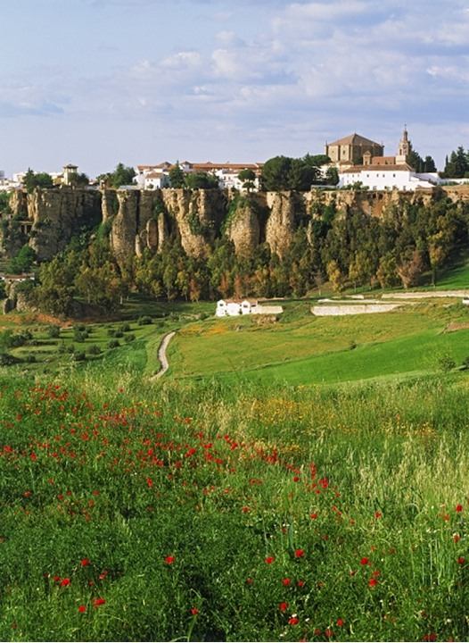 Village of Ronda above field of wild flowers in Malaga province Spain