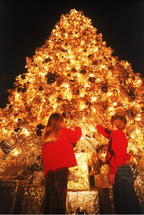 Boy and girl under brightly decorated giant Christmas tree