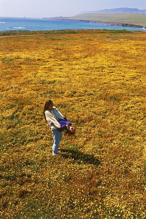 Mother and daughter playing in field of wild flower on California coast