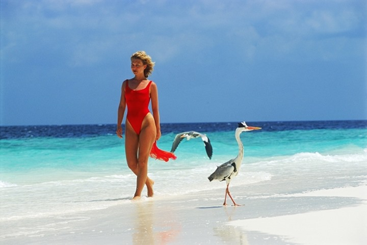 Woman with two herons on beach in Maldives