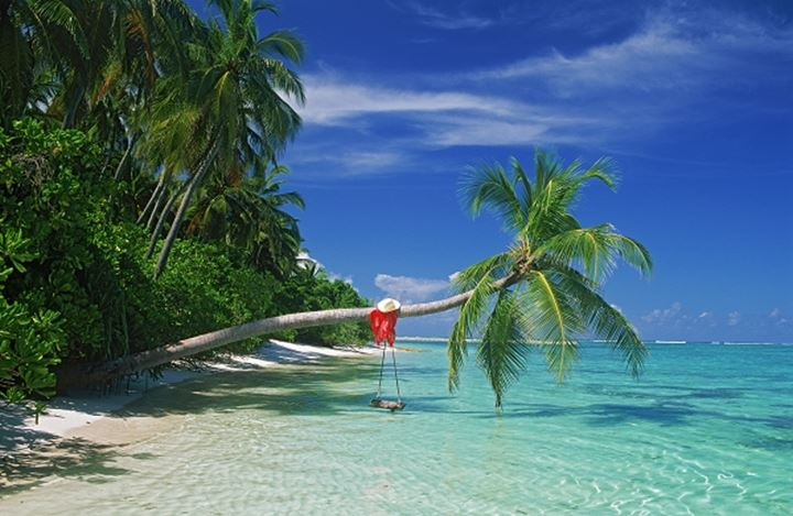 Palm tree with swing and hat over aqua waters in Maldives