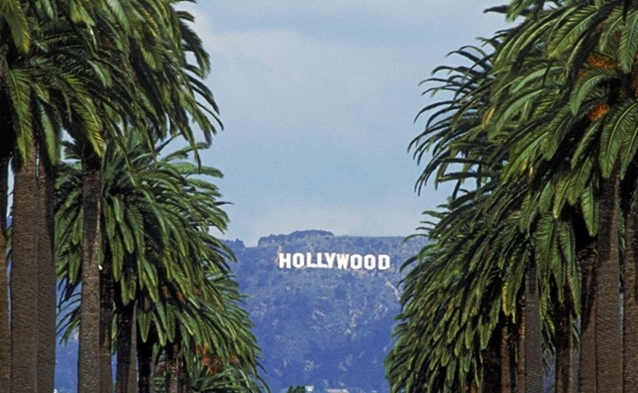 Palm trees and Hollywood sign from Los Angeles suburb