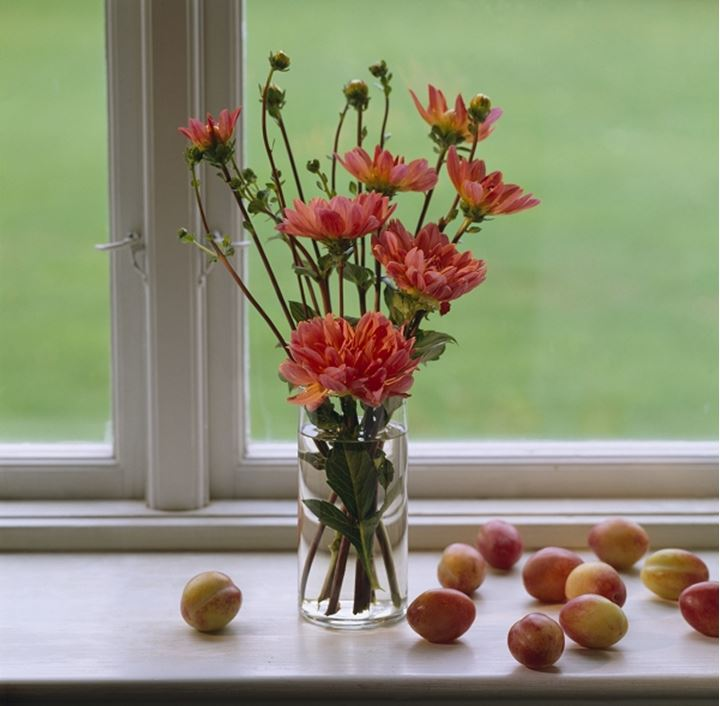 Close up of flower vase by window