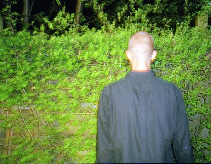 Rear view of a man urinating against a hedge