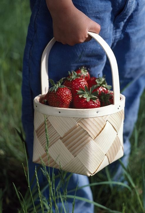 Low section view of a child holding a basket of strawberries