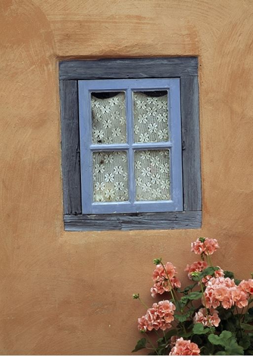 Close up of a window with flowers