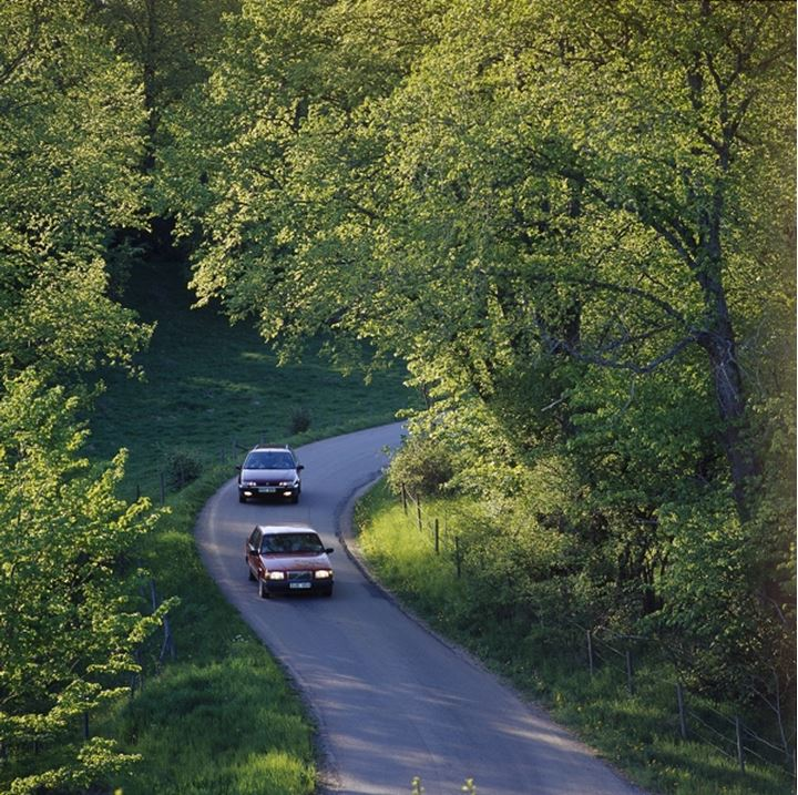 Two cars driving on a countryroad in between trees, Sweden