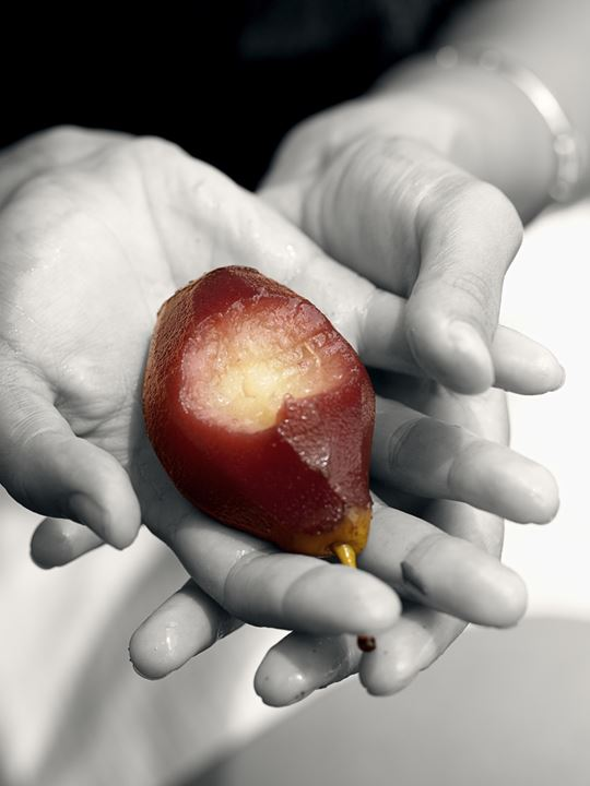 Brown pear in woman's hands