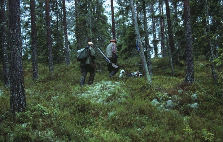 Two hunters with a dog in the forest