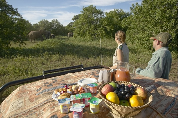 """""""Bonnet Breakfast"""" as part of game drive specifically dealing with elephants.  Mashatu Game Reserve. Northern Tuli Game Reserve. Botswana."""