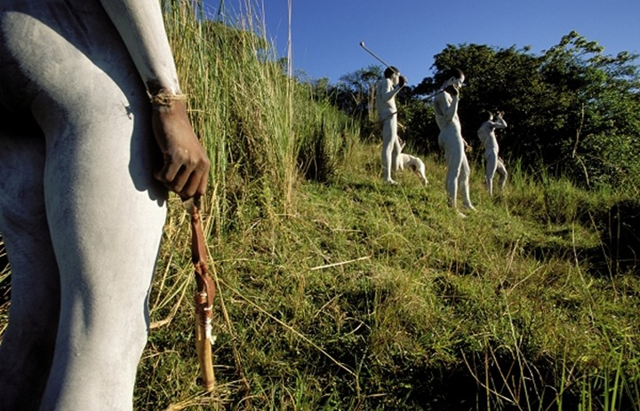 Xhosa amaKwetha (young men who has just been circumcised as part of their initiation into manhood) hunting birds. Wild Coast.  Eastern Cape. South Africa