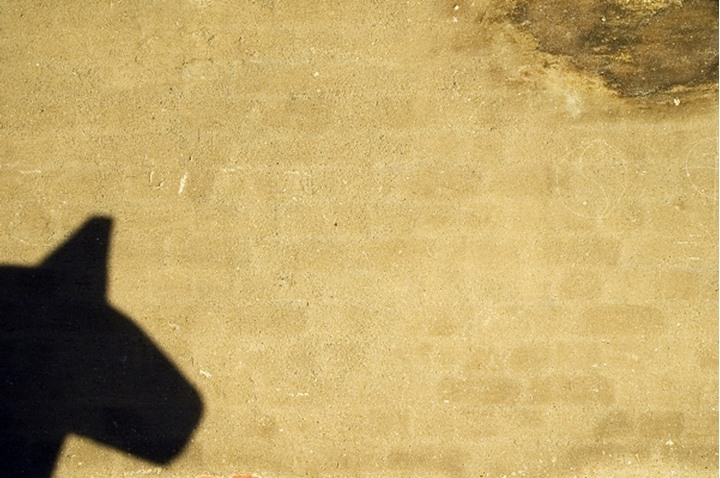 A shadow on a wall at Cityhall, Stockholm, Sweden