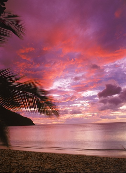 Crimson sunset skies over sandy shore with palm trees, Huahine Island, French Polynesia.