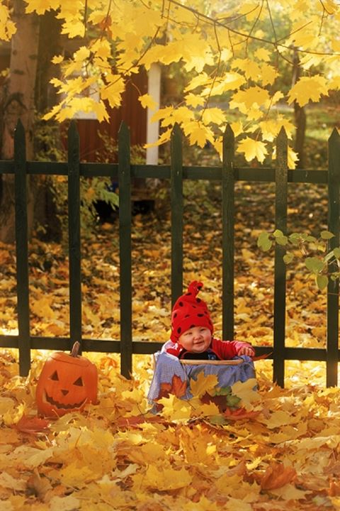 Baby in basket amid autumn colors with pumpkin