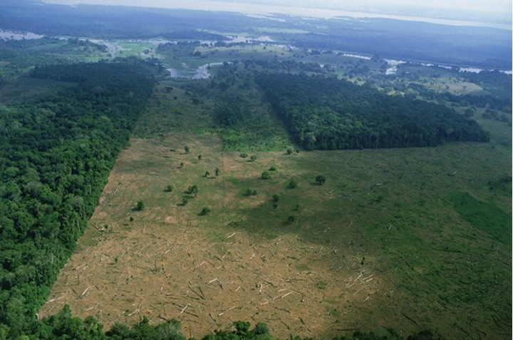 Aerial view of deforestation of rainforests in Brazil near Amazon River