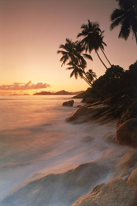 Palm trees and waves over granite rock formations on La Digue Island at sunset