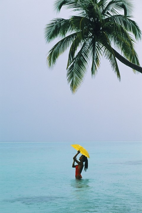 Woman standing under palm tree and yellow umbrella in warm tropical rain