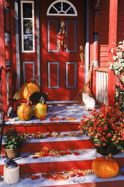 Autumn colors and Halloween feeling in New England with cat and pumpkins on front porch