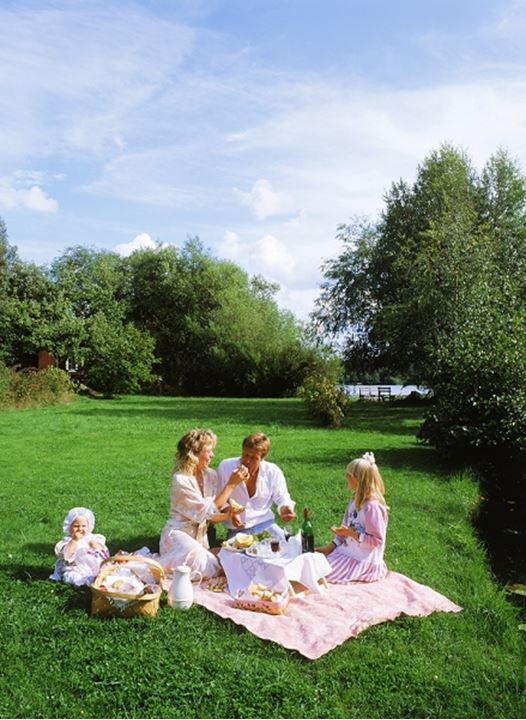 Family of four having summer picnic on grass field in Swedish countryside