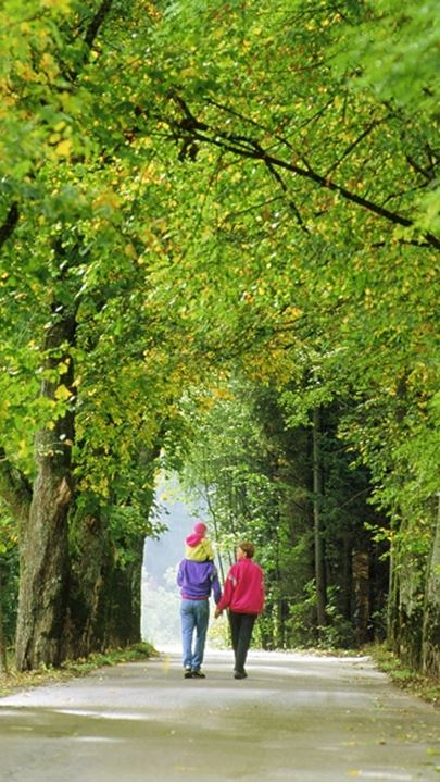 Family of three on tree-lined country road in Bavaria  Germany