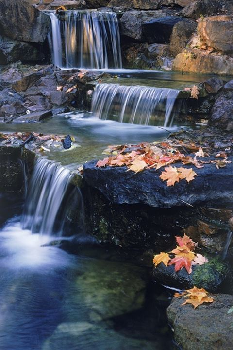 Small stream cascading over rocks decorated with autumn leaves in New England