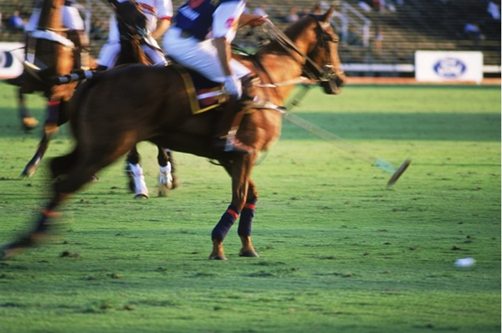 Polo players in action at Campo de Polo in Buenos Aires, Argentina