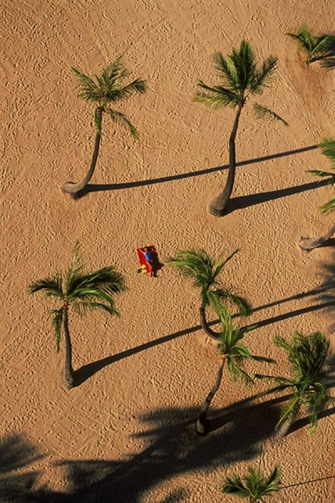 Woman alone on Waikiki Beach amid palm trees from above